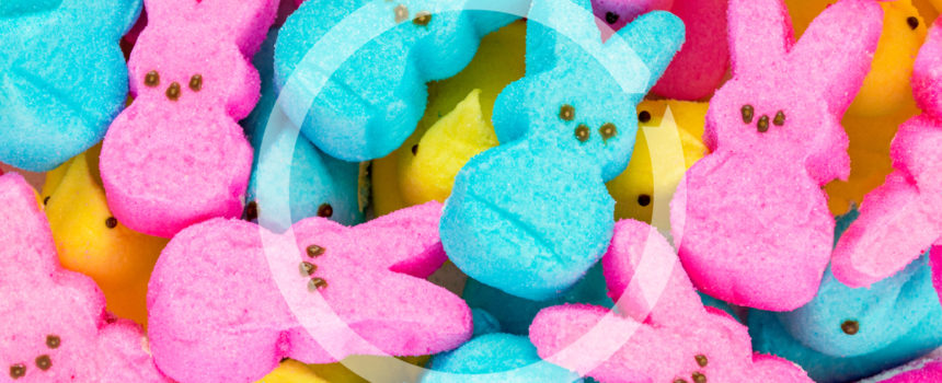 image of bunny Peeps marshmallow confections
